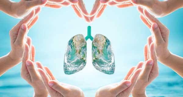 Всемирный день борьбы с пневмонией.