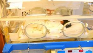 Отделение патологии новорожденных